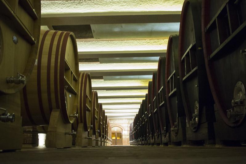 wine cellar tikves
