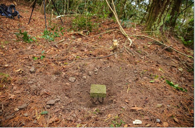 歐帕喀爾山冠字補近(25)山字森林三角點(Elev. 1170 m) 2