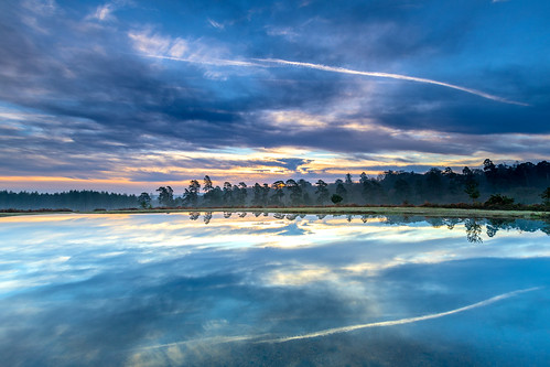 landscape newforest nature reflection tree cloud contrail water slufters pond