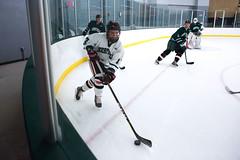 Alumni Hockey