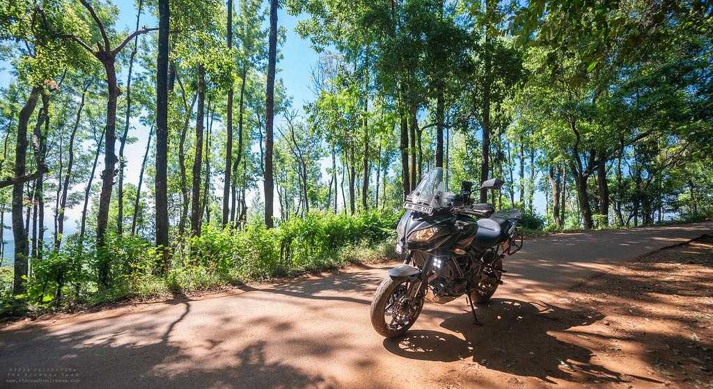 Road to Mullayanagiri!