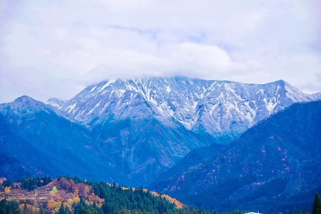 Autumn and winter in, Panasonic DMC-GX7MK2, OLYMPUS DIGITAL 40-150mm Lens