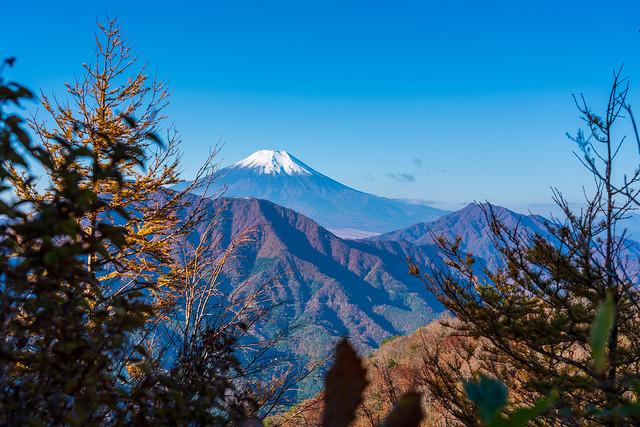 西ヶ原への下りのポイントで、富士山がお出まし