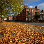 Avenham Autumn at Preston