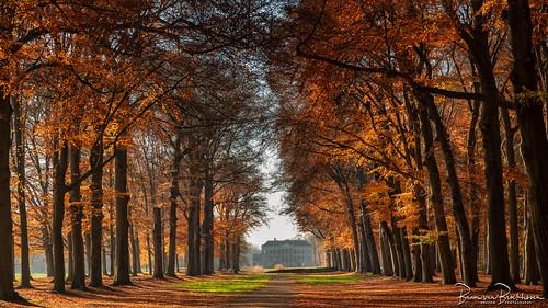 Maison Moët - Parc Broekhuizen