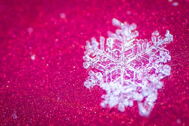Snowflake - Flocon de, Canon EOS REBEL T3I, Tamron 90mm f/2.8