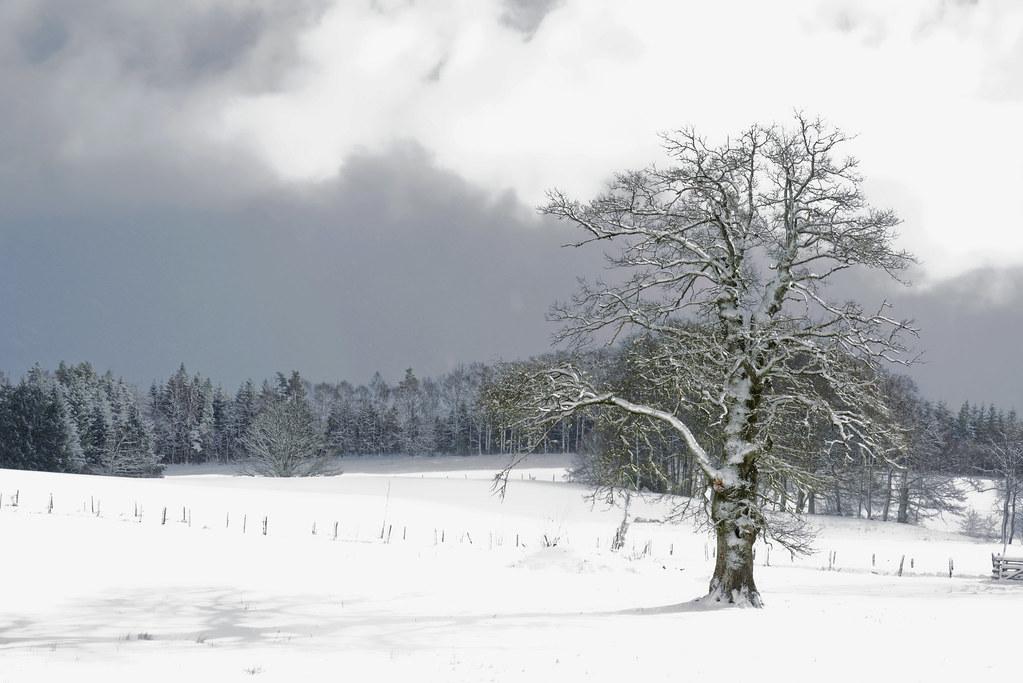 Plateau Son MillevachesL'hiver De Manteau Blanc Étend fY7vbgy6