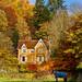 autumn by alastairgraham19