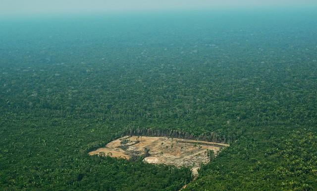 Imagem aérea do desmatamento na Floresta Amazônica, em 22 de setembro de 2017 - Créditos: CARL DE SOUZA / AFP