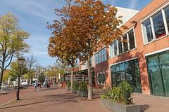 Amstel - Amsterdam (Netherlands)