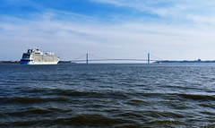 The Anthem of the Seas heads for the Verrazzano-Narrows Bridge and the Atlantic Ocean on its way to Barbados via Puerto Rico