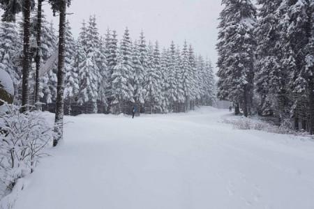 Aktualizované teploty a výška sněhu na webu Jizerské 50