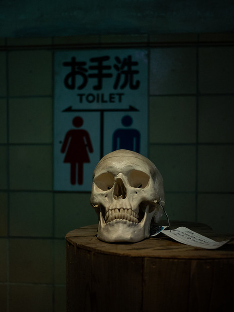 a skull in front, Panasonic DMC-GM5, Lumix G 20mm F1.7 Asph.