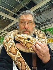 Alain, as you know I hate snakes....   :o)