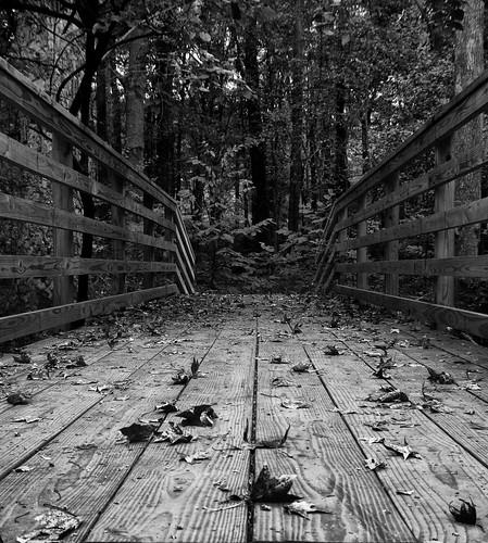 Bridge over Hardee Creek