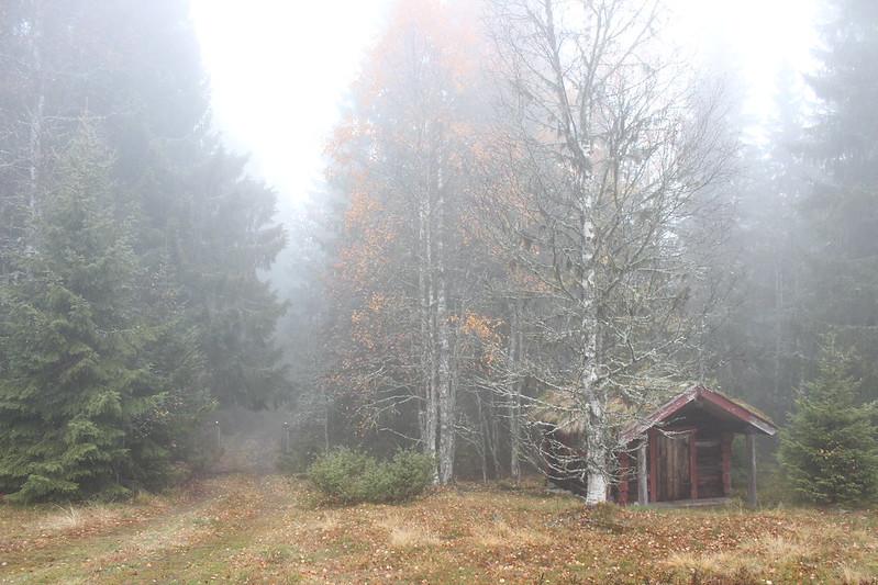 Sætra / etdrysskanel.com