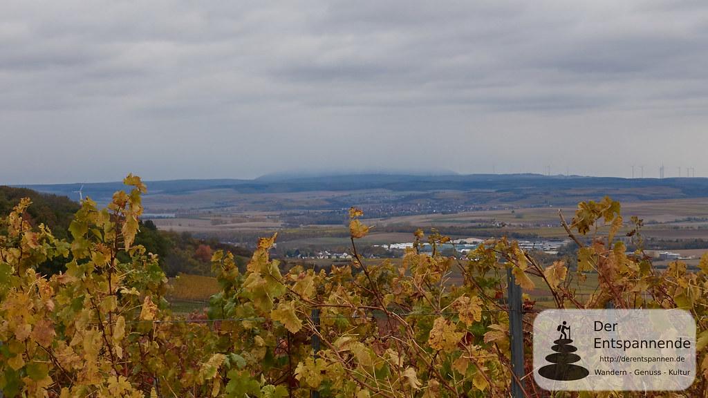 Über Horrweiler: Blick auf verregneten Donnersberg