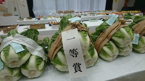 201811 蕨市園芸品評会