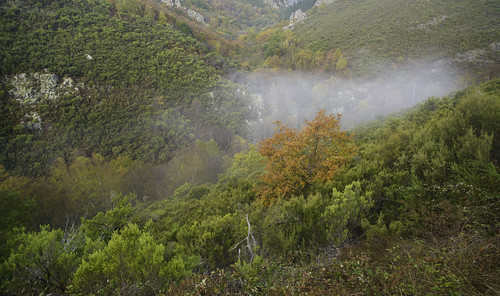 Autumn fog over river Vilanova
