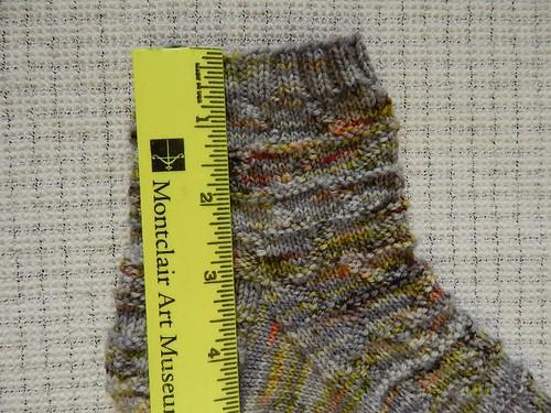 Close up of leg