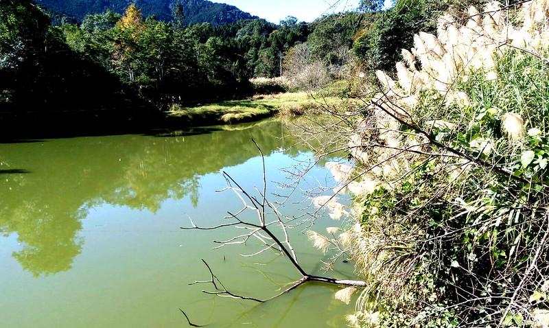 向天湖 (14)