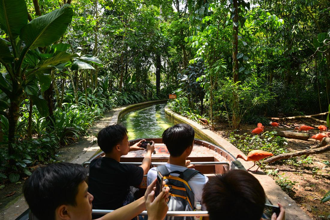 Singapore-zoo-(5)