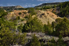 Blue Skies with Clouds and Badlands in a Late Afternoon Light (South Unit, Theodore Roosevelt National Park)