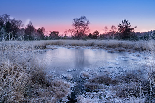 """ Gildehauservenn Cold Morning """