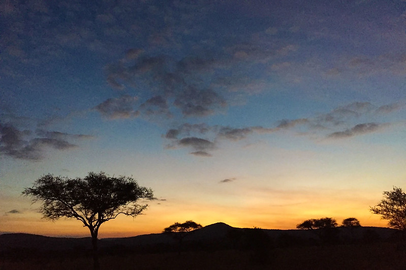Nimali Serengeti sunrise
