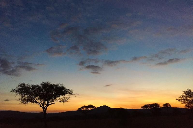 Nimali Serengeti sunrise