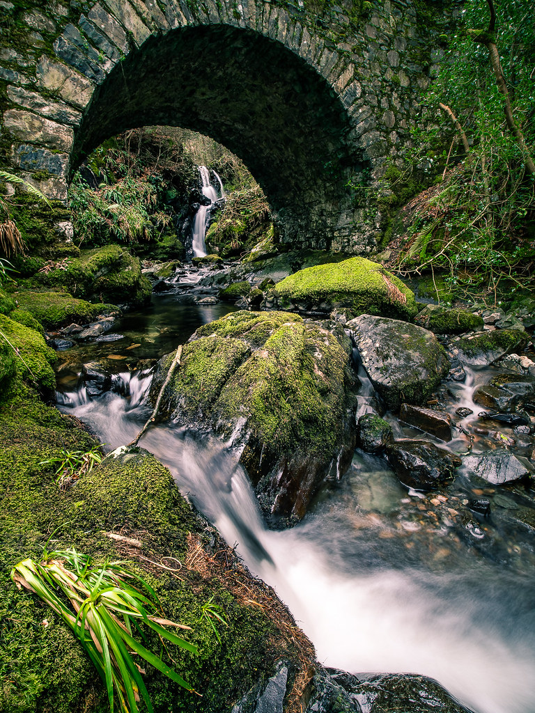 Tollymore Forest Park, United Kingdom picture