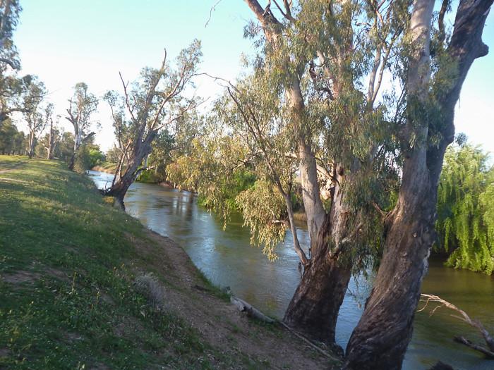 Namoi River near Boggabri