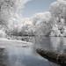 Lake Constance - Infrared Summershot