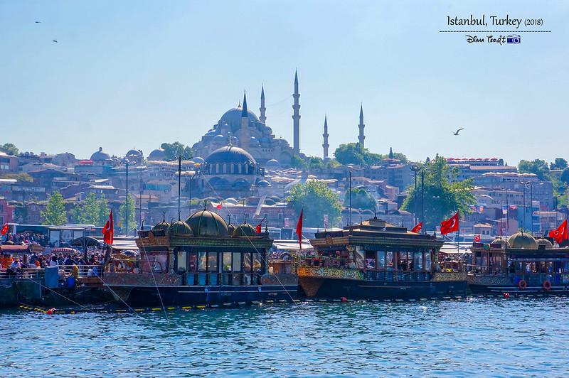 2018 Turkey Istanbul 02