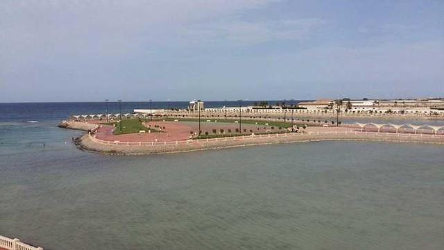 4811 7 Reasons families living in Jeddah should visit Dhaban Marine Park 06