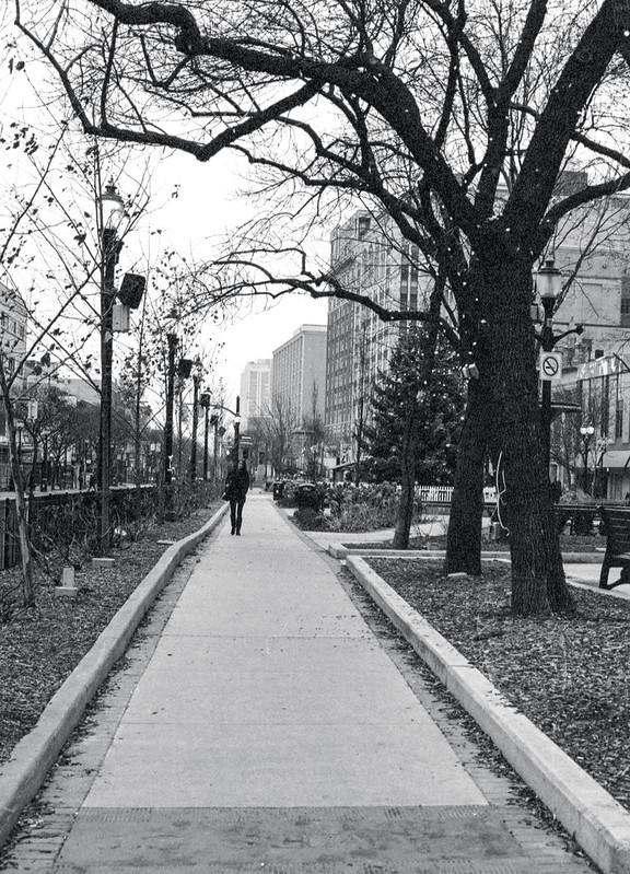 Gore Park in December