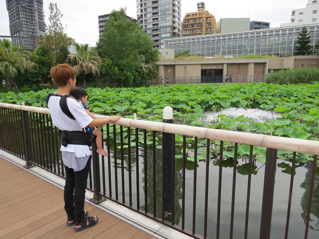 TOKYO ZOO上野動物園(兩光媽咪柳幼幼) (25)