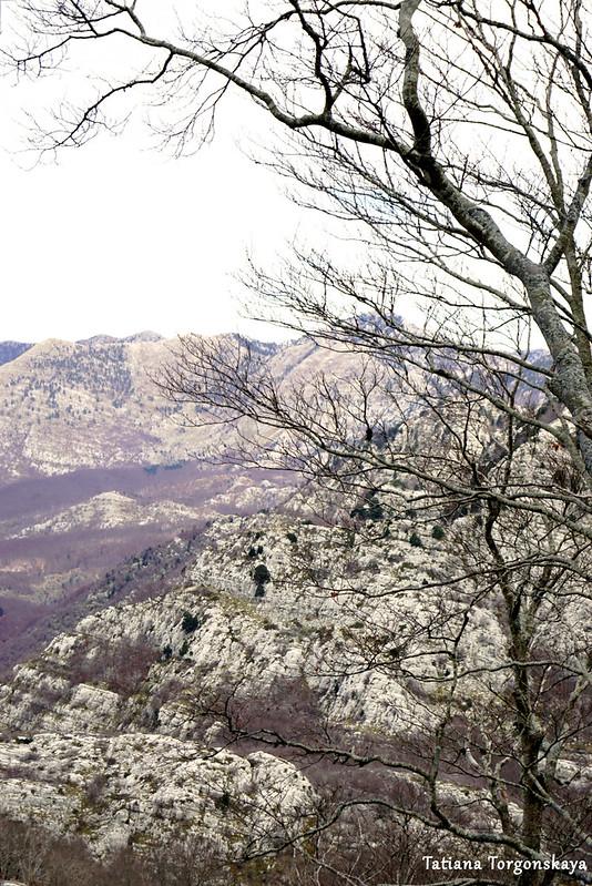 Вид с тропы на финальном участке подъема