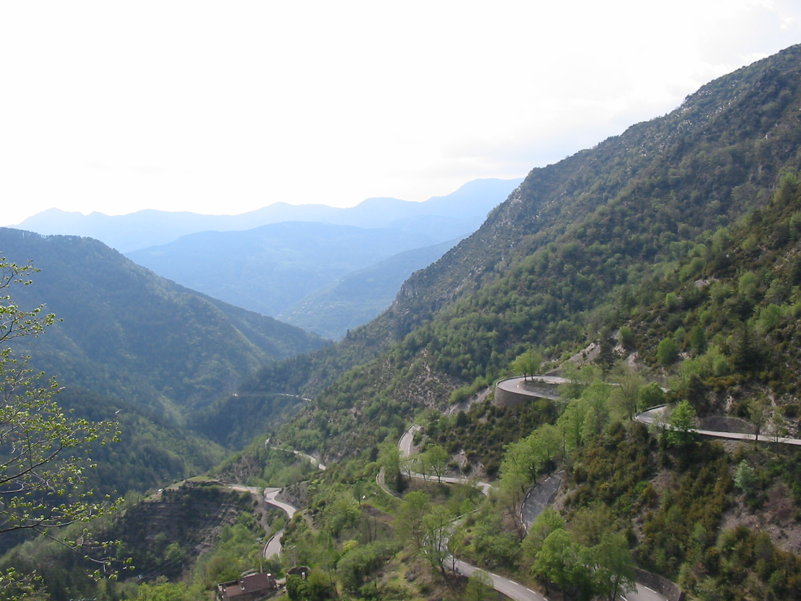 The Col de Turini (el. 1607 m) is a high mountain pass in the Alps in the department of Alpes-Maritimes in France. It lies near Sospel, between the communes of Moulinet and La Bollène-Vésubie in the Arrondissement of Nice. It is famous for a stage of the Monte Carlo Rally which is held on the tight road with its many hairpin turns. Until a few years ago, the Col de Turini was also driven at night, with thousands of fans watching the