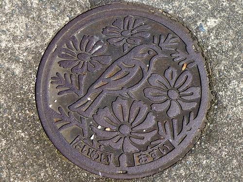 Taimei Kumamoto, manhole cover 2 (熊本県岱明町のマンホール2)