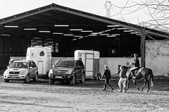 Venteille-concours-Marcheprime-2018-12-09-108 - Photo of Marcheprime