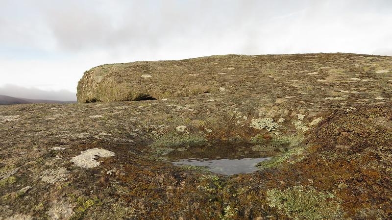 Little Hayne Down Tor rock basin