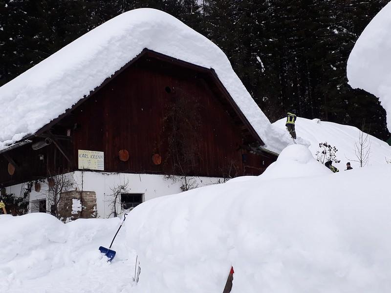 SchneedruckRosenau-26
