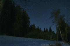 Starry night in Maibrunn
