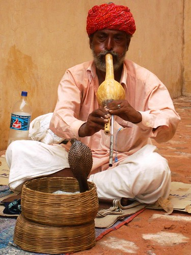 Snake charmer. From an exceprt from Only in India: Adventures of an International Educator