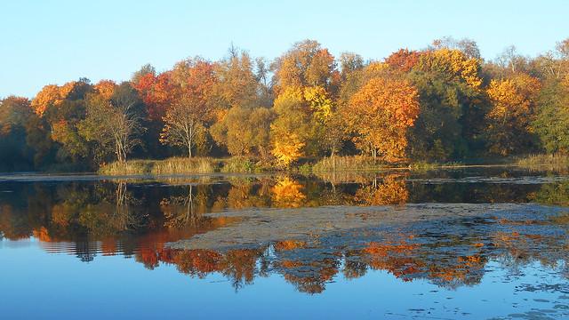 Autumn Fairytale 72, Nikon COOLPIX S3600