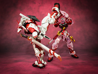 HiRM_Astray_Red_Frame_29
