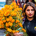 2018 - Mexico - Morelia - Marigold Bouquet por Ted's photos - Returns Early January