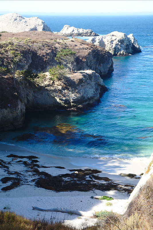 Inlet, South Shore trail, Point Lobos