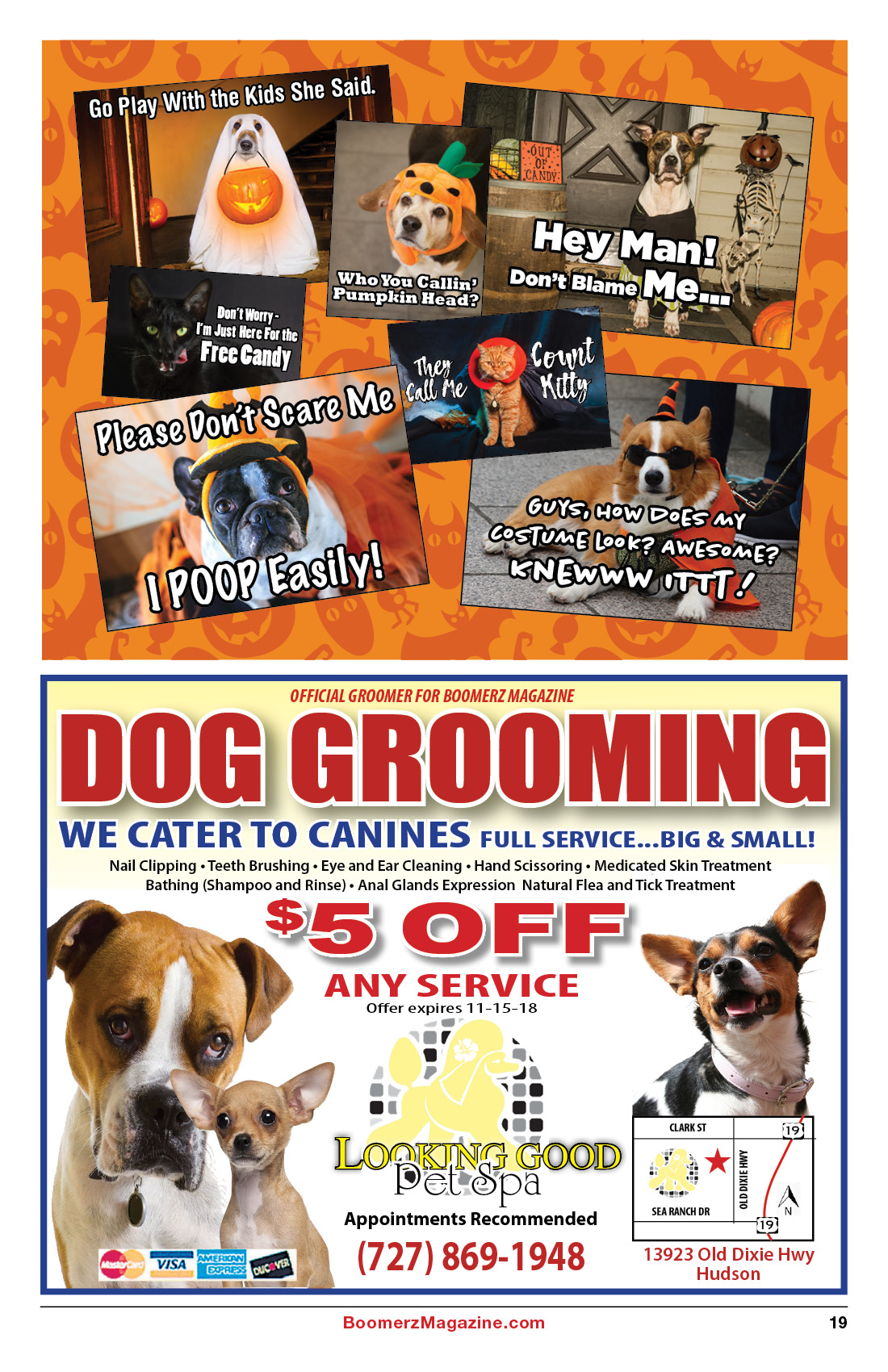 2018 October Boomerz Magazine Page 19 Add from Looking Good Pet and Spa
